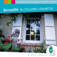 COUV CONSEILS CHOUETTES